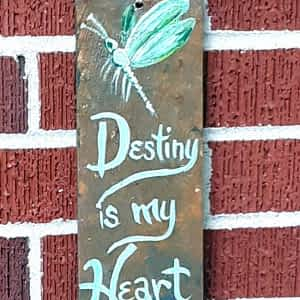 dragonfly destiny is my heart