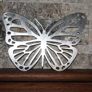 Butterfly on Shelf