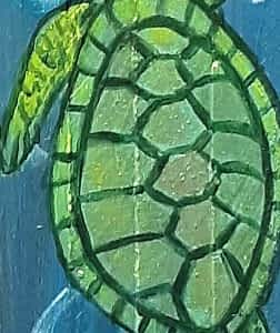 Go with the Flow Turtle